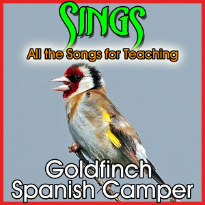 Sings All the Songs for Teaching Goldfinch. Spanish Camper Birds