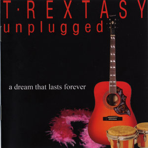 A Dream That Lasts Forever (Unplugged)