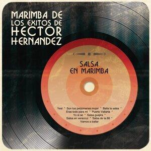 Salsa en Marimba