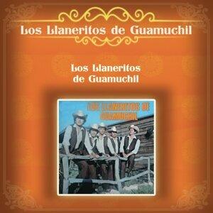 Los Llaneritos de Guamuchil