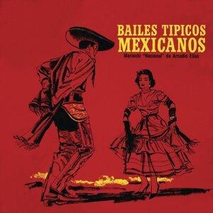 Bailes Típicos Mexicanos