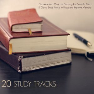 20 Study Tracks - Concentration Music for Studying for Beautiful Mind & Good Study Music to Focus and Improve Memory