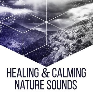 Healing & Calming Nature Sounds – Music to Rest, New Age Relaxation, Focus on Nature, Stress Free