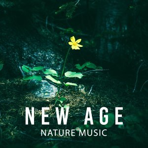 New Age Nature Music – Sounds of Calmness, Nature Sounds to Rest & Relax, Chilled Music, Rain Sounds