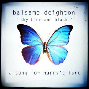 Sky Blue and Black - A Song for Harry's Fund