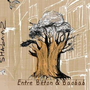 Entre Béton & Baobab