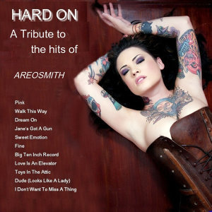 A Tribute To The Hits of Aerosmith