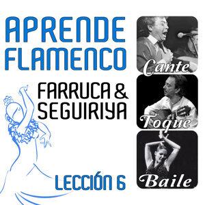 Aprende Flamenco. Farruca y Seguiriya: Lección 6