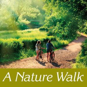 A nature walk