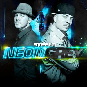 Neon Grey