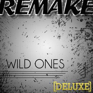 Wild Ones (Flo Rida feat. Sia Deluxe Remake)