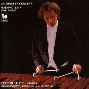 Rosauro, Bach, Fink & Stout: Marimba en concert