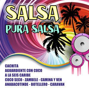 Salsa Pura Salsa