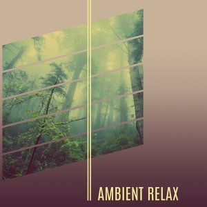 Ambient Relax – Soft Nature Sounds, New Age Music for Relax After Work, Relief Stress, Reduce Anxiety and Rest