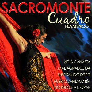Sacromonte, Cuadro Flamenco