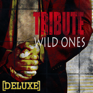 Wild Ones (Flo Rida feat. Sia Deluxe Tribute)