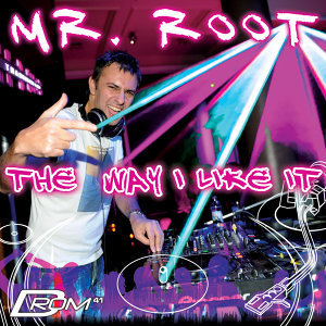 The Way I Like It (Mixed by Mr. Root)