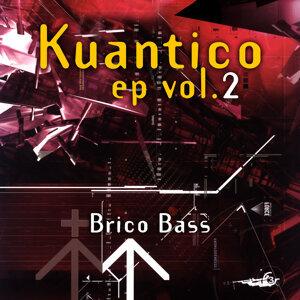 Vol. 2 - Brico Bass