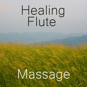 Healing Flute Recorder: Healing Massage Music