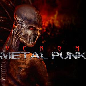 Metal Punk