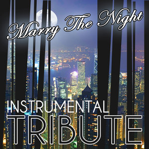 Marry The Night (Lady GaGa Tribute) - Instrumental