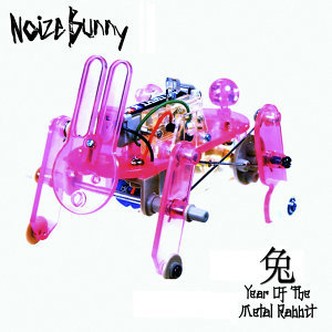 Year Of The Metal Rabbit