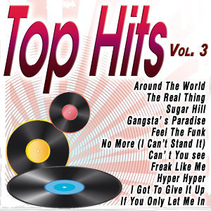 Top Hits Vol.3