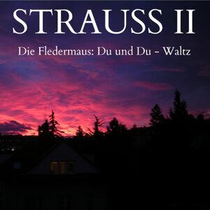 Strauss II - Die Fledermaus: Du und Du, Op. 367 - Waltz