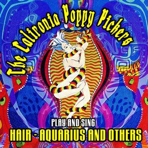 Play & Sing - Hair, Aquarius & Others