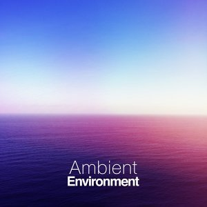 Ambient Environment