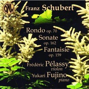 Schubert: Pièces pour violon et piano