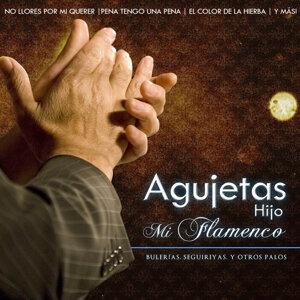 Agujetas Hijo, Mi Flamenco