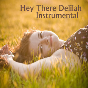 Hey There Delilah Instrumental Song