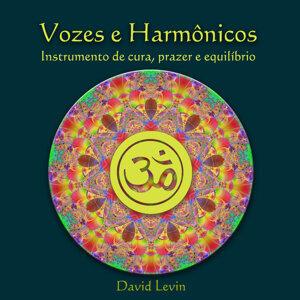 Vozes e Harmônicos Instrumento de Cura, Prazer e Equilíbrio