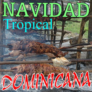 Navidad Tropical Dominicana 2012