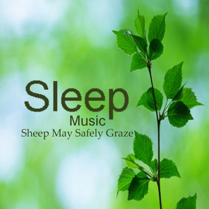 Sleeping Music: Sheep May Safely Graze