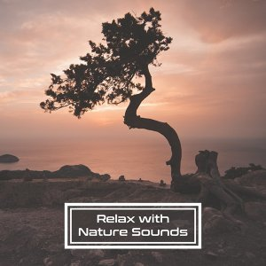 Relax with Nature Sounds – Music for Relaxation, Deep Sleep, Relaxing Waves, Soothing Rain, Birds Sounds, Ambient Music, Pure Mind