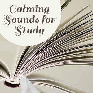 Calming Sounds for Study – Music for Learning, Deep Focus, Stress Relief, Nature Sounds Help Pass Exam, Clear Mind