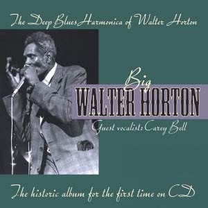 The Deep Blues Harmonica Of Walter Horton