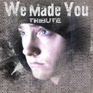 We Made You (Eminem Tribute)