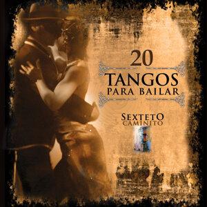 20 Tangos para bailar