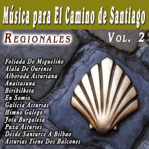 Musica Para El Camino De Santiago Regionales  Vol. 2