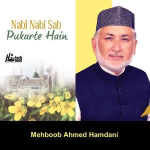 Nabi Nabi Sab Pukarte Hain - Islamic Naats