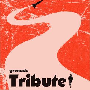 Grenade (Bruno Mars Tribute)