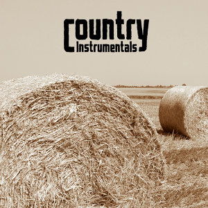 Country Instrumental Hits