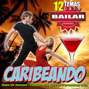 Caribeando 12 Canciones Para Bailar Salsa Rumba Y Merengue