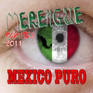 Merengue Mexico Picante (2011-2012)