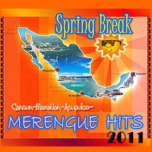 Merengue Hits 2011