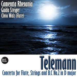 Telemann: Concerto for Flute, Strings & Bass Continuo No.2
