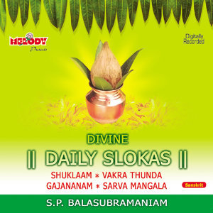 DIVINE DAILY SLOKAS ( DIVINE CHANTS )